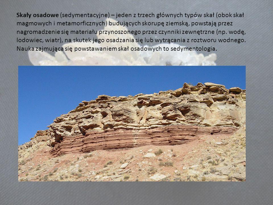 Skały osadowe (sedymentacyjne) – jeden z trzech głównych typów skał (obok skał magmowych i metamorficznych) budujących skorupę ziemską, powstają przez