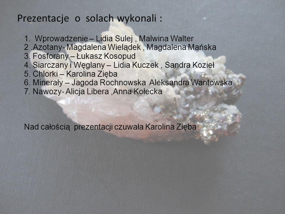 Prezentacje o solach wykonali : 1.Wprowadzenie – Lidia Sulej, Malwina Walter 2.Azotany- Magdalena Wielądek, Magdalena Mańska 3. Fosforany – Łukasz Kos