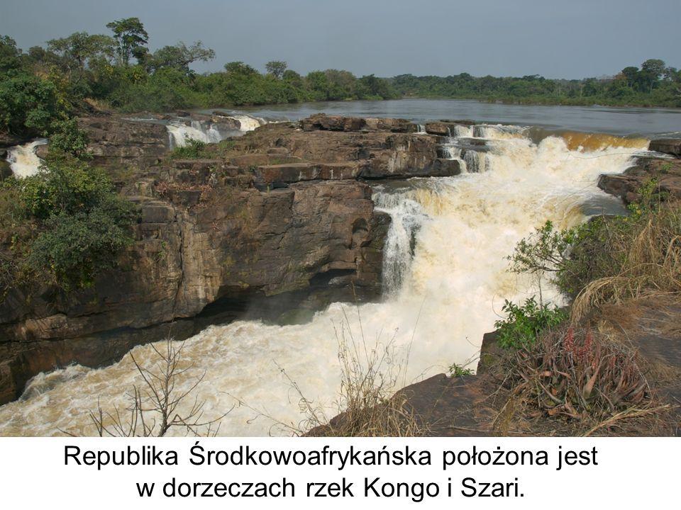 Republika Środkowoafrykańska położona jest w dorzeczach rzek Kongo i Szari.