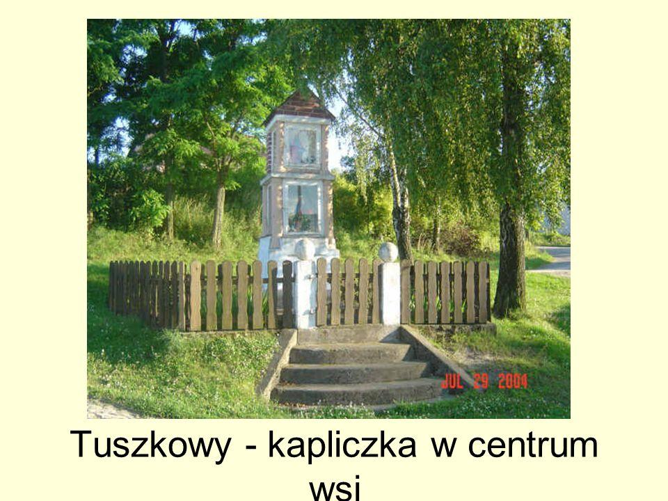 Tuszkowy - kapliczka w centrum wsi