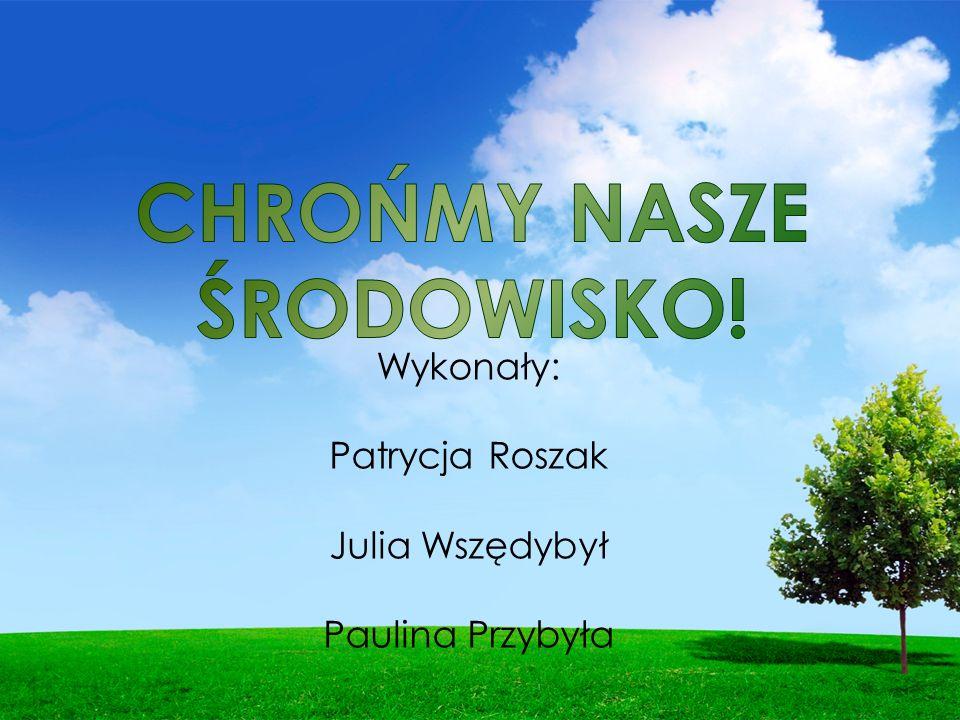 Wykonały: Patrycja Roszak Julia Wszędybył Paulina Przybyła