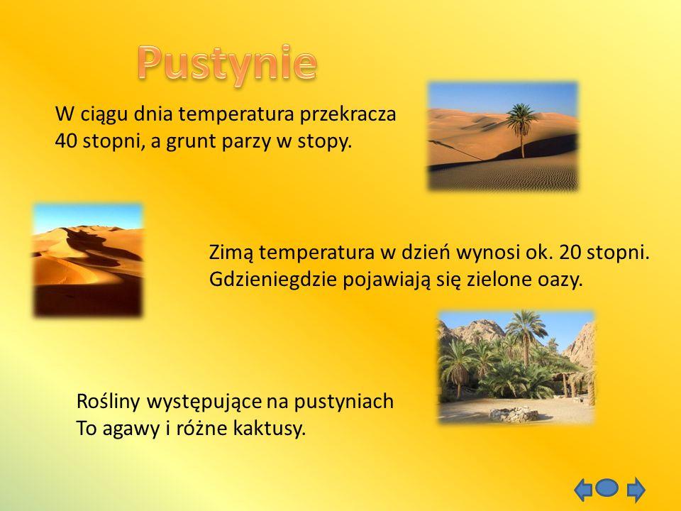 W ciągu dnia temperatura przekracza 40 stopni, a grunt parzy w stopy. Zimą temperatura w dzień wynosi ok. 20 stopni. Gdzieniegdzie pojawiają się zielo