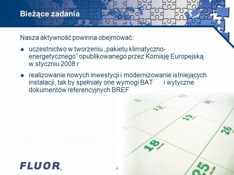 Bieżące zadania 4 Nasza aktywność powinna obejmować: u uczestnictwo w tworzeniu pakietu klimatyczno- energetycznego opublikowanego przez Komisję Europejską w styczniu 2008 r u realizowanie nowych inwestycji i modernizowanie istniejących instalacji, tak by spełniały one wymogi BAT i wytyczne dokumentów referencyjnych BREF