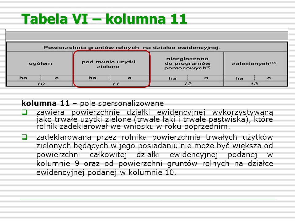 Tabela VI – kolumna 11 kolumna 11 – pole spersonalizowane zawiera powierzchnię działki ewidencyjnej wykorzystywaną jako trwałe użytki zielone (trwałe