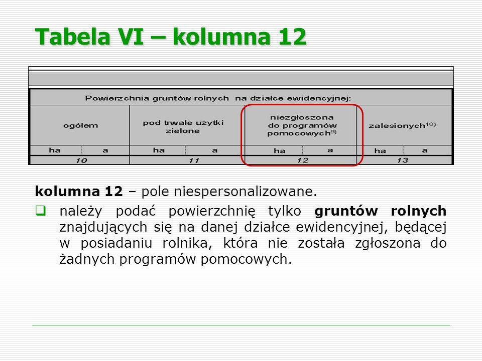 Tabela VI – kolumna 12 kolumna 12 – pole niespersonalizowane. należy podać powierzchnię tylko gruntów rolnych znajdujących się na danej działce ewiden