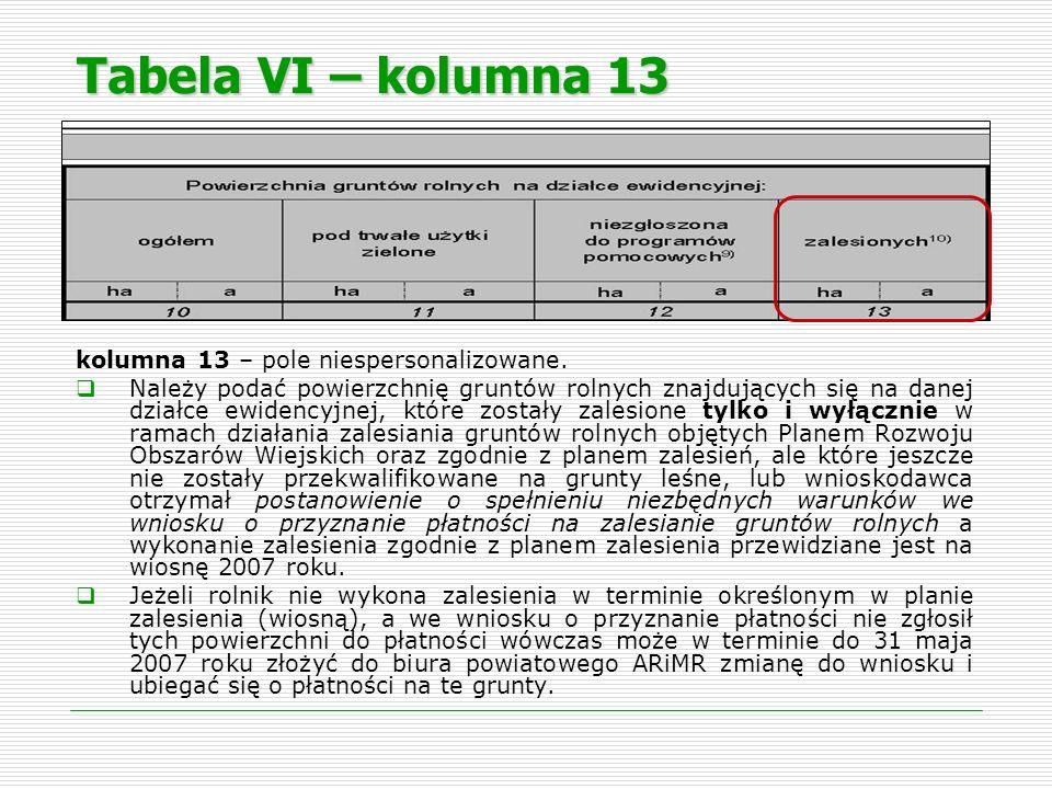 Tabela VI – kolumna 13 kolumna 13 – pole niespersonalizowane. Należy podać powierzchnię gruntów rolnych znajdujących się na danej działce ewidencyjnej