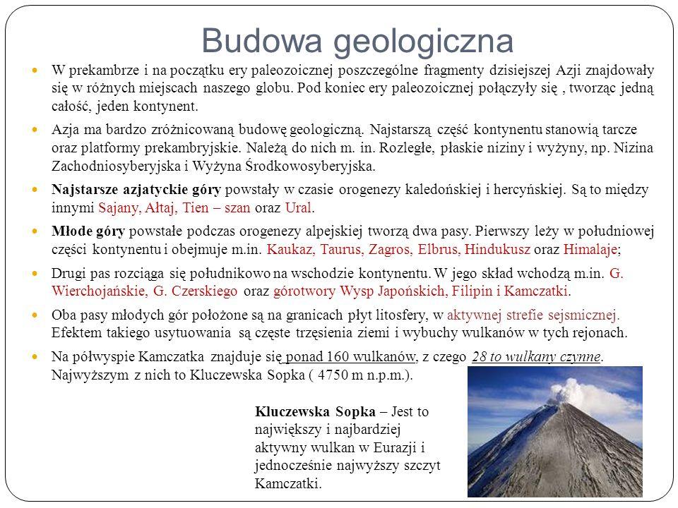 Budowa geologiczna W prekambrze i na początku ery paleozoicznej poszczególne fragmenty dzisiejszej Azji znajdowały się w różnych miejscach naszego globu.
