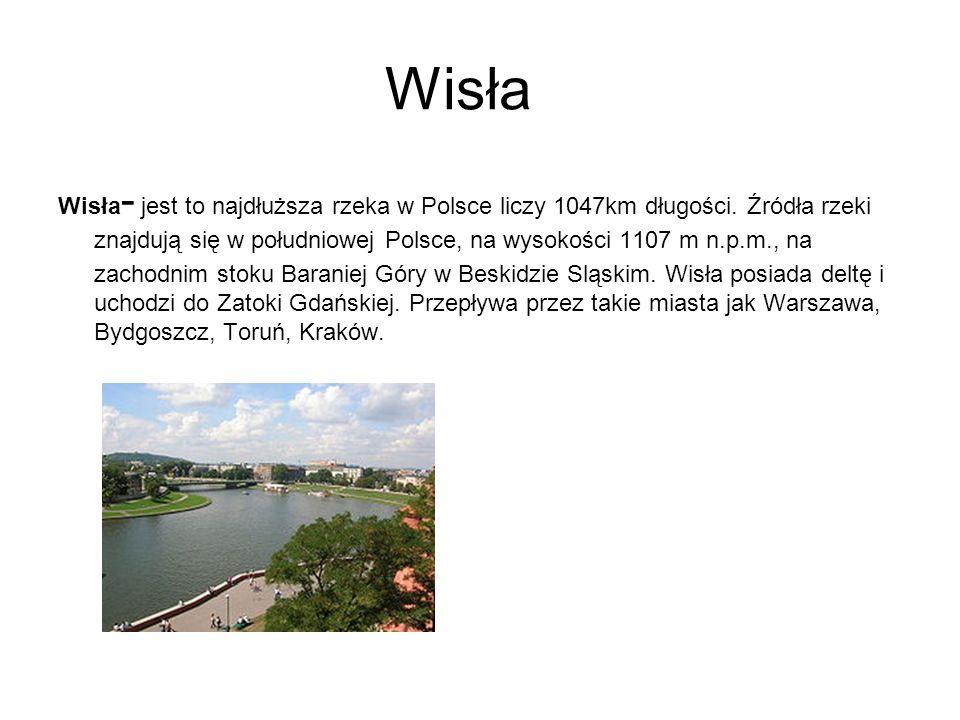 Wisła Wisła - jest to najdłuższa rzeka w Polsce liczy 1047km długości. Źródła rzeki znajdują się w południowej Polsce, na wysokości 1107 m n.p.m., na