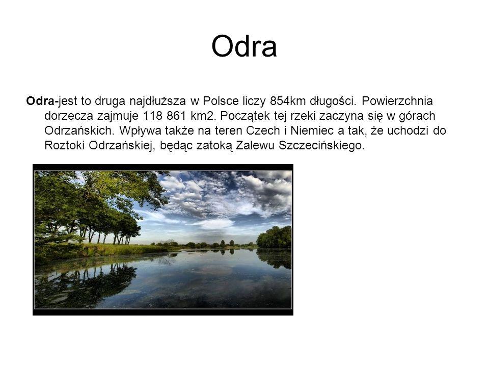 Odra Odra-jest to druga najdłuższa w Polsce liczy 854km długości. Powierzchnia dorzecza zajmuje 118 861 km2. Początek tej rzeki zaczyna się w górach O