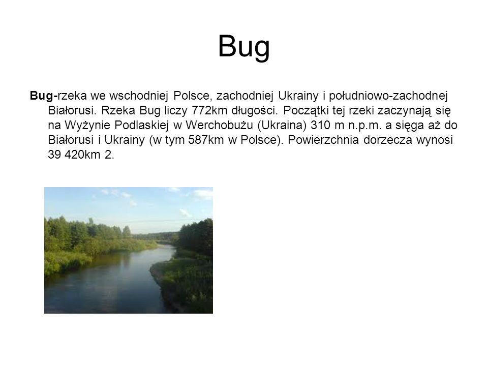 Bug Bug-rzeka we wschodniej Polsce, zachodniej Ukrainy i południowo-zachodnej Białorusi. Rzeka Bug liczy 772km długości. Początki tej rzeki zaczynają
