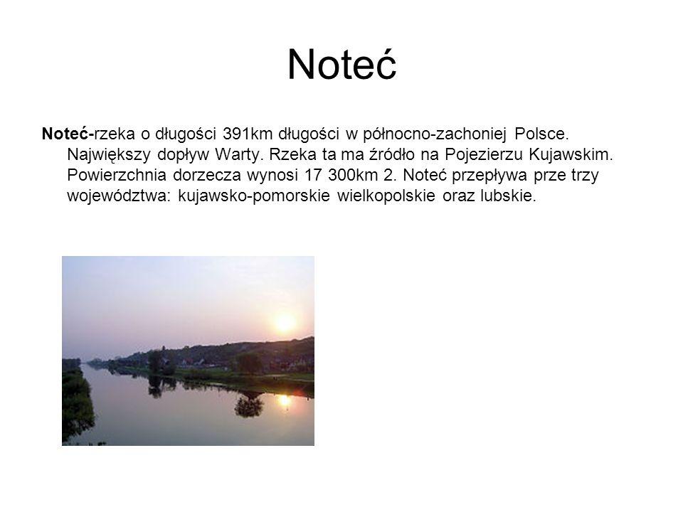 Noteć Noteć-rzeka o długości 391km długości w północno-zachoniej Polsce. Największy dopływ Warty. Rzeka ta ma źródło na Pojezierzu Kujawskim. Powierzc