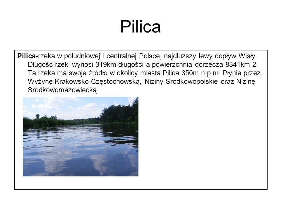 Pilica Pilica-rzeka w południowej i centralnej Polsce, najdłuższy lewy dopływ Wisły. Długość rzeki wynosi 319km długości a powierzchnia dorzecza 8341k