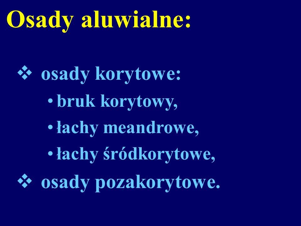 Osady aluwialne: osady korytowe: bruk korytowy, łachy meandrowe, łachy śródkorytowe, osady pozakorytowe.