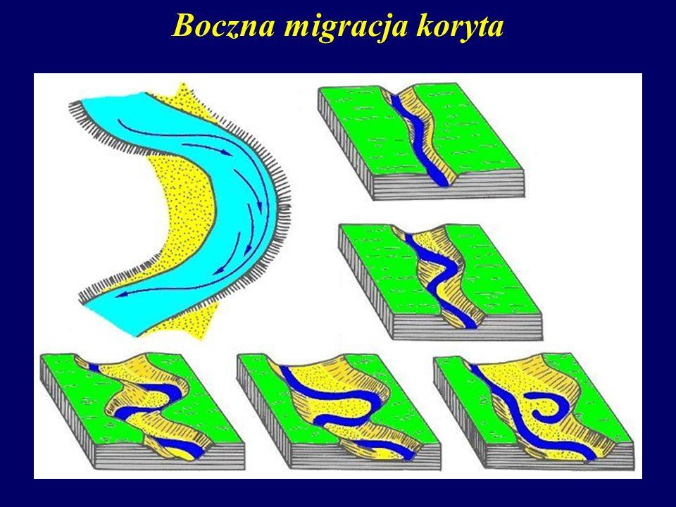 Boczna migracja koryta