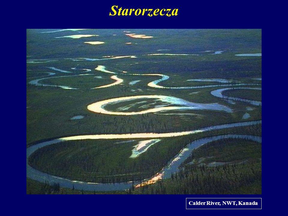 Starorzecza Calder River, NWT, Kanada