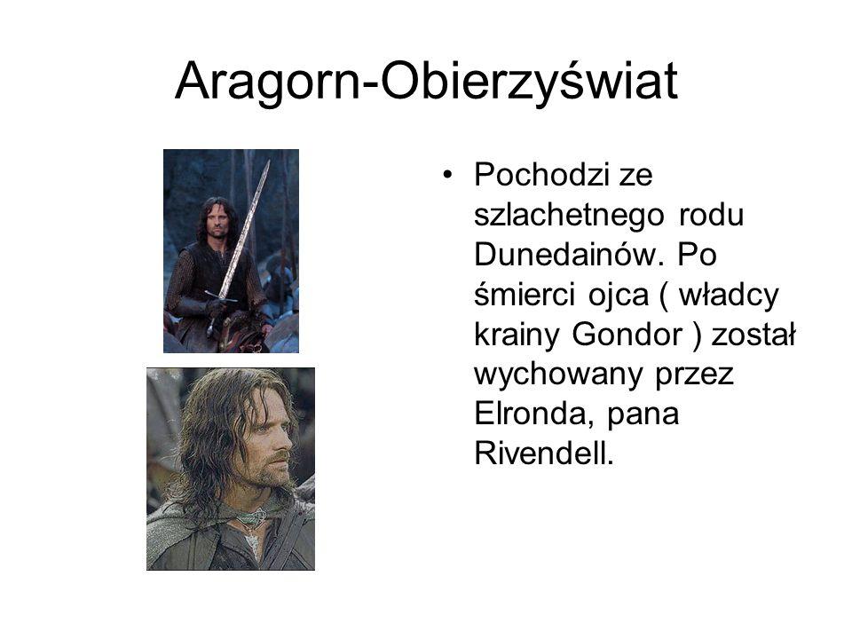Aragorn-Obierzyświat Pochodzi ze szlachetnego rodu Dunedainów. Po śmierci ojca ( władcy krainy Gondor ) został wychowany przez Elronda, pana Rivendell