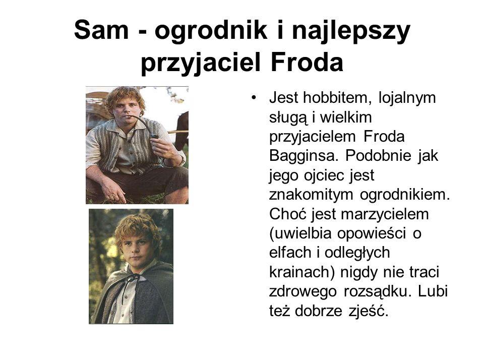 Sam - ogrodnik i najlepszy przyjaciel Froda Jest hobbitem, lojalnym sługą i wielkim przyjacielem Froda Bagginsa. Podobnie jak jego ojciec jest znakomi