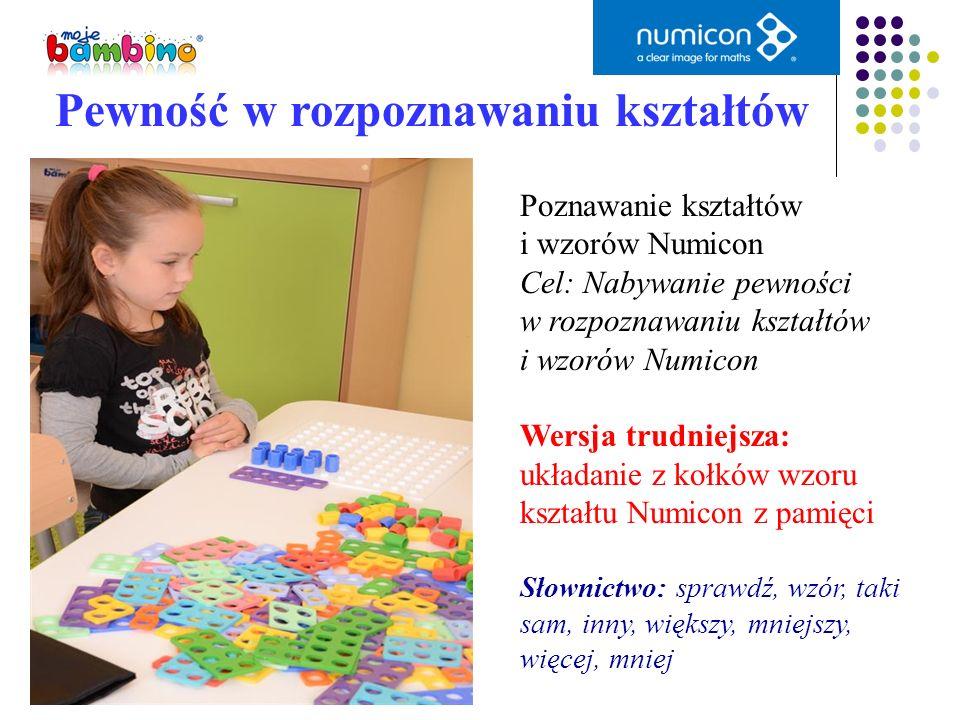 Pewność w rozpoznawaniu kształtów Poznawanie kształtów i wzorów Numicon Cel: Nabywanie pewności w rozpoznawaniu kształtów i wzorów Numicon Wersja trud