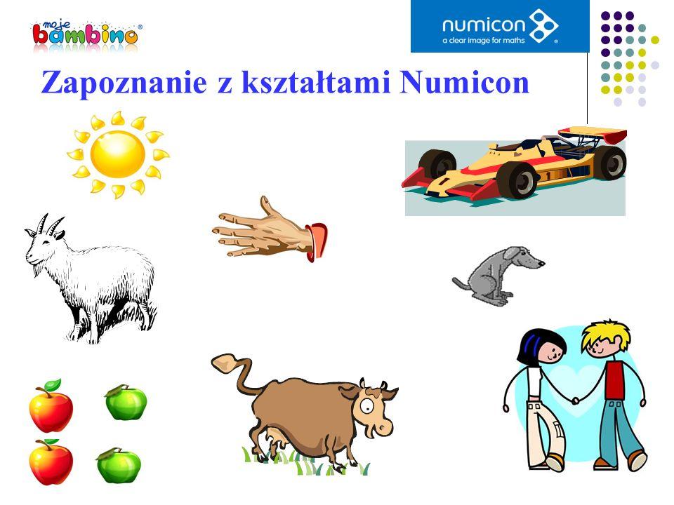 Zapoznanie z kształtami Numicon