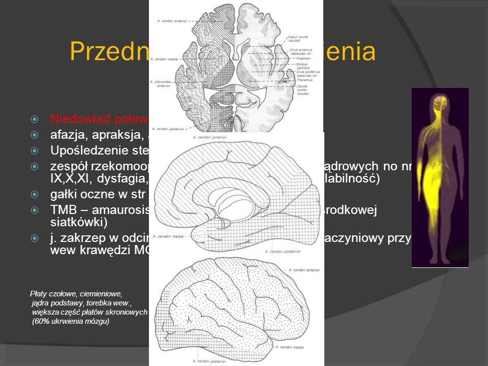 OBJAWY Przedni krąg unaczynienia – t. sz.wew Niedowład połowiczy +/-niedoczulica połowicza afazja, apraksja, agnozja, zaburzenia otępienne Upośledzeni