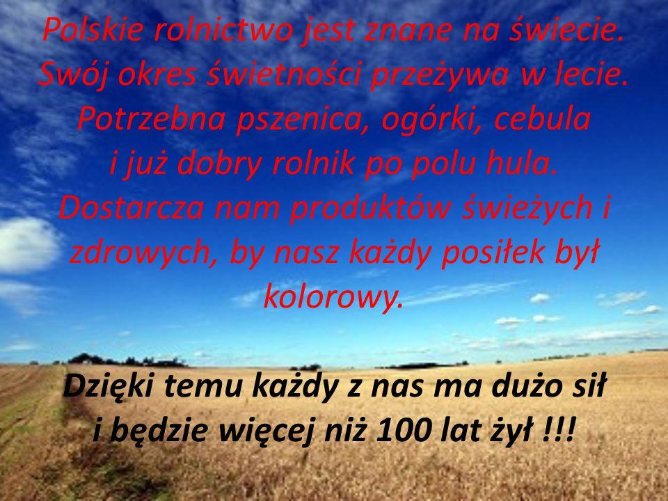Polskie rolnictwo jest znane na świecie. Swój okres świetności przeżywa w lecie. Potrzebna pszenica, ogórki, cebula i już dobry rolnik po polu hula. D