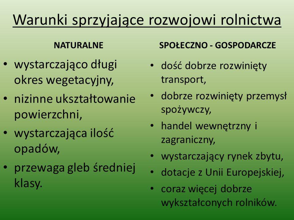 Hodowla bydła Pogłowie bydła w Polsce wynosi ok.5,8 mln sztuk.