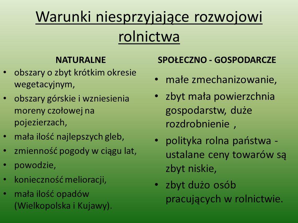 Hodowla trzody chlewnej Pogłowie trzody chlewnej w Polsce wynosi ok.