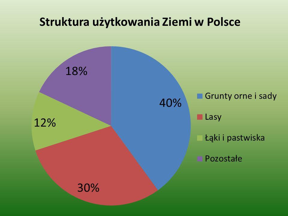 Hodowla owiec Średnia obsada owiec w Polsce wynosi ok.