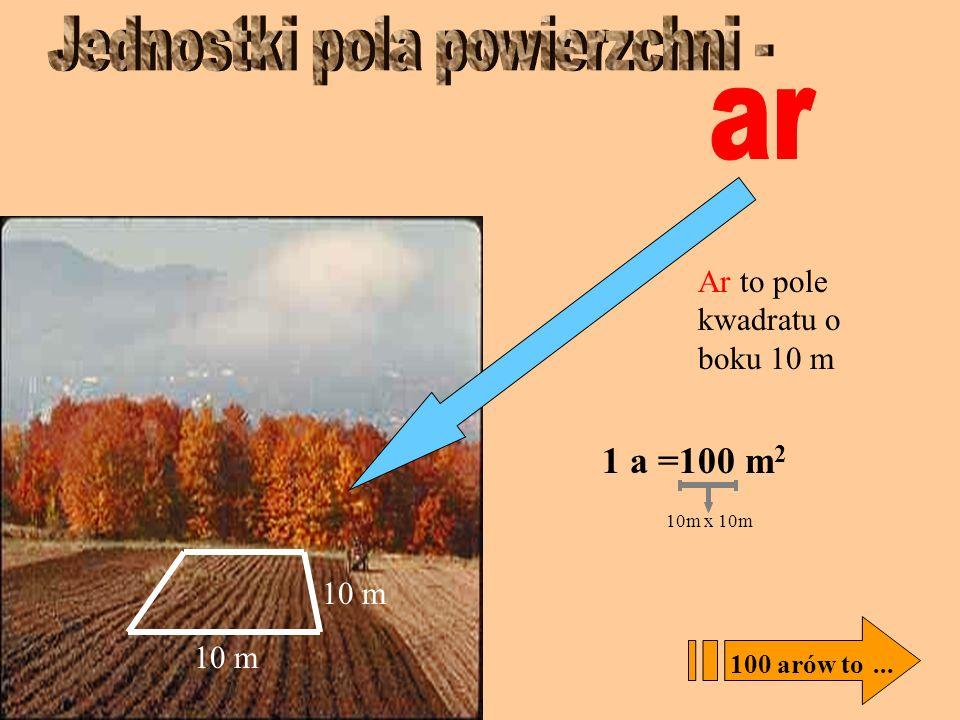 Metr kwadratowy, to kwadrat o boku 1 metra 1 m 1m 2 = 100 dm 2 100 m 2 to... 10dm x 10dm 1m 2 =10 000 cm 2 100cm x 100cm