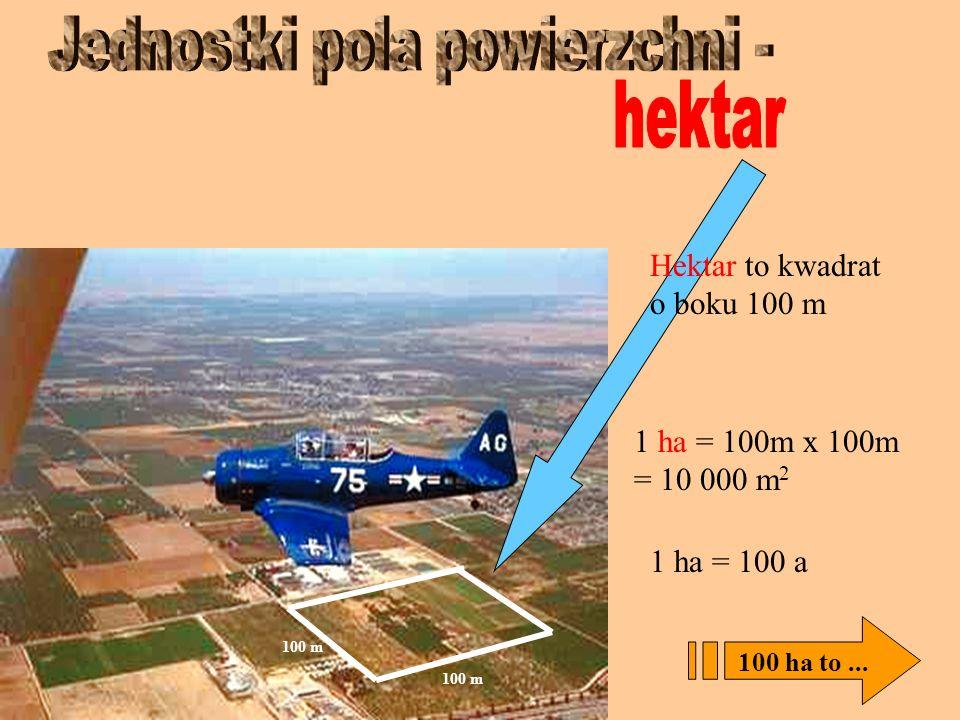 Ar to pole kwadratu o boku 10 m 10 m 1 a =100 m 2 10m x 10m 100 arów to...
