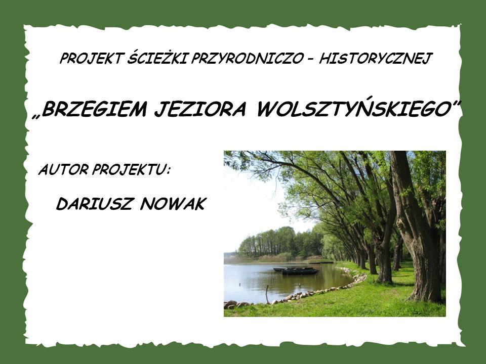 Stworzenie ścieżki przyrodniczo - historycznej wzdłuż fragmentu brzegu Jeziora Wolsztyńskiego.