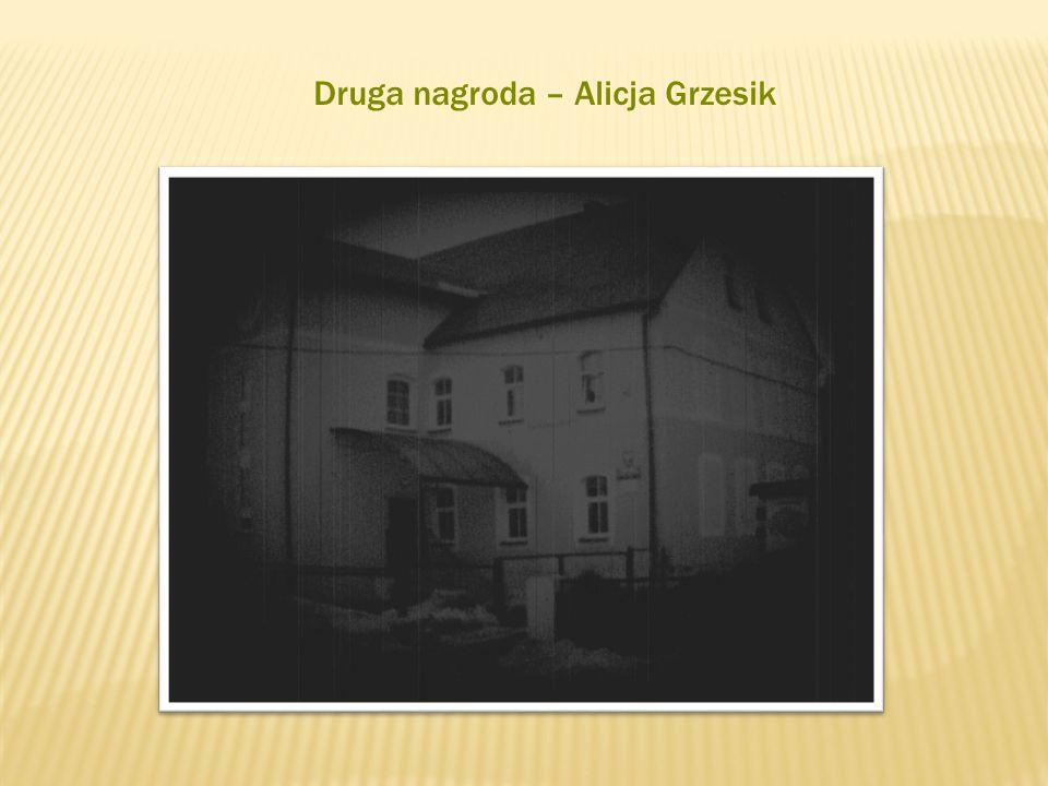Druga nagroda – Alicja Grzesik