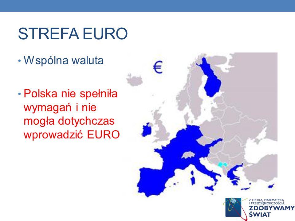 STREFA EURO Wspólna waluta Polska nie spełniła wymagań i nie mogła dotychczas wprowadzić EURO