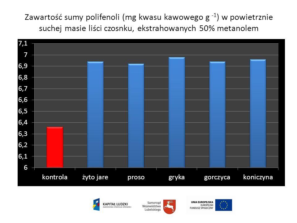 Zawartość sumy polifenoli (mg kwasu kawowego g -1 ) w powietrznie suchej masie liści czosnku, ekstrahowanych 50% metanolem