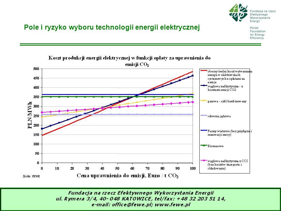 8 Pole i ryzyko wyboru technologii energii elektrycznej