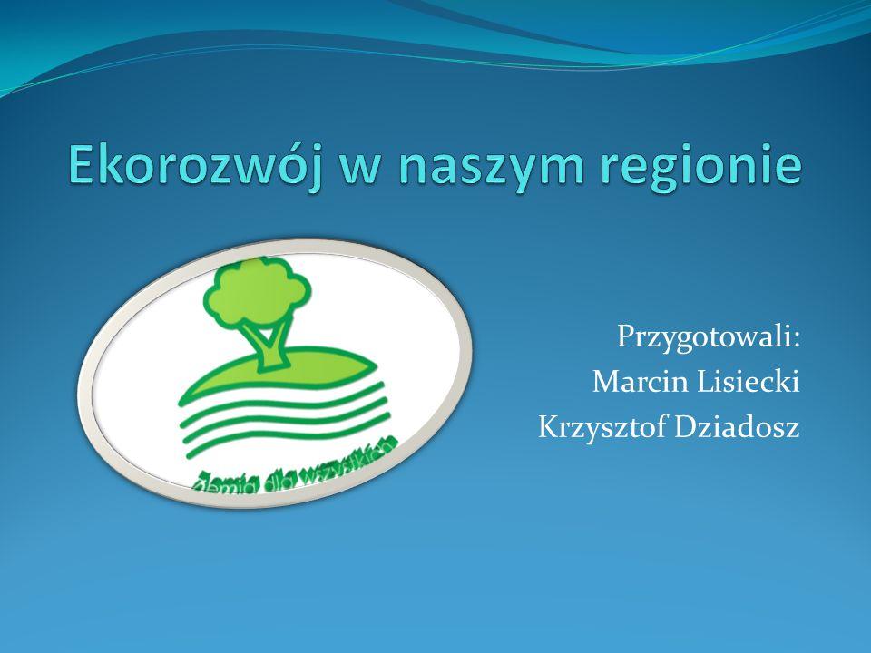 Przygotowali: Marcin Lisiecki Krzysztof Dziadosz
