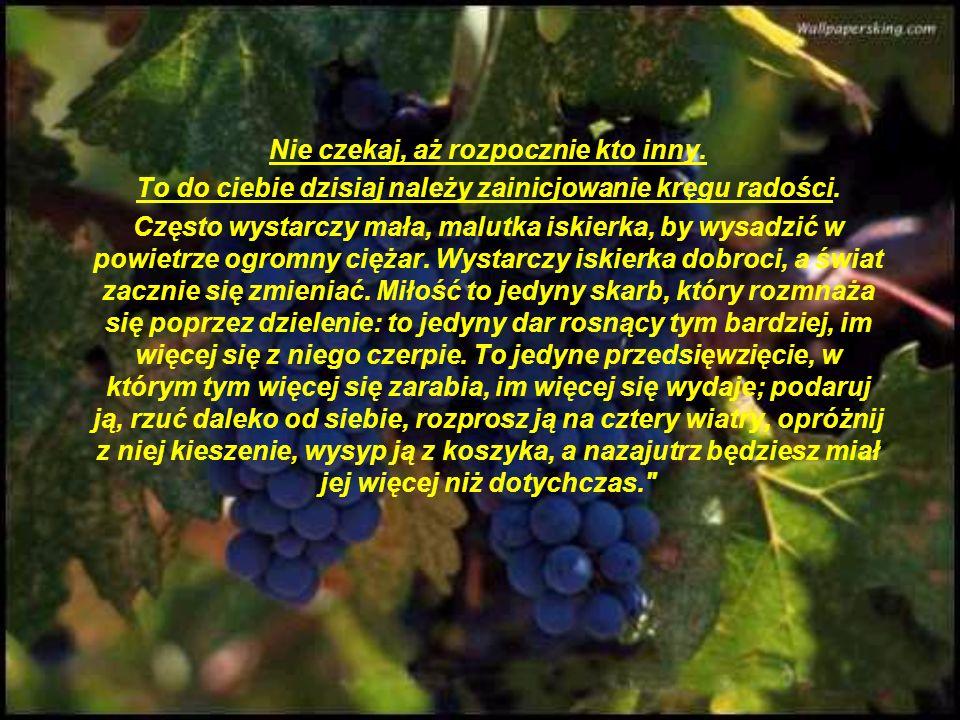 I tak kiść winogron znowu odbyła małą wędrówkę. Jednak nie pozostała długo w celi chorego brata, który posłał ją bratu kucharzowi pocącemu się cały dz