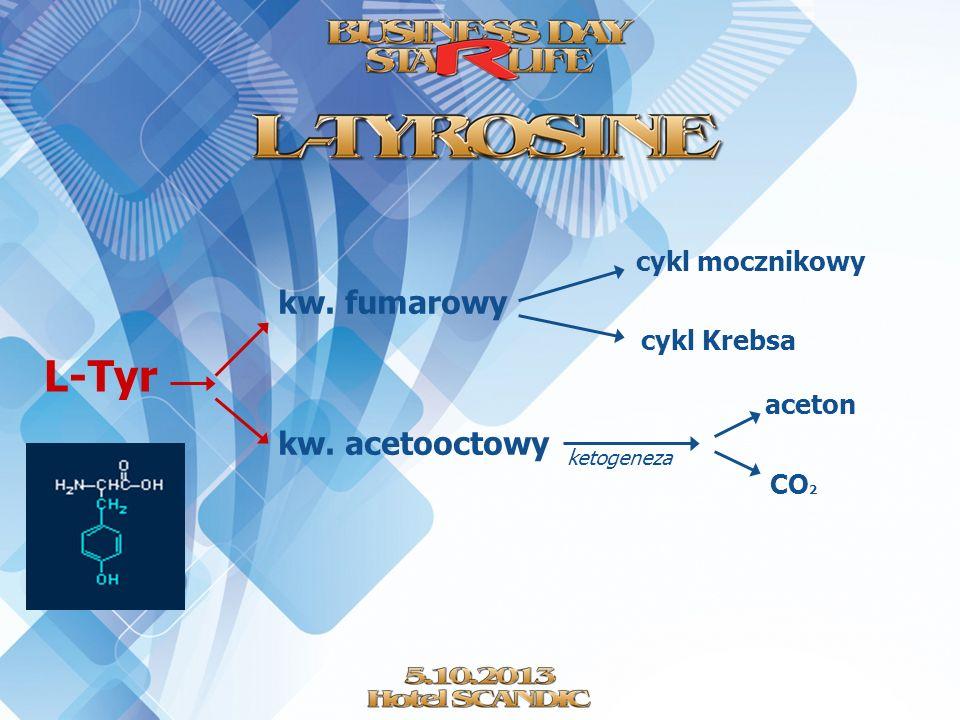 L-Tyr kw. fumarowy kw. acetooctowy cykl mocznikowy cykl Krebsa ketogeneza aceton CO 2