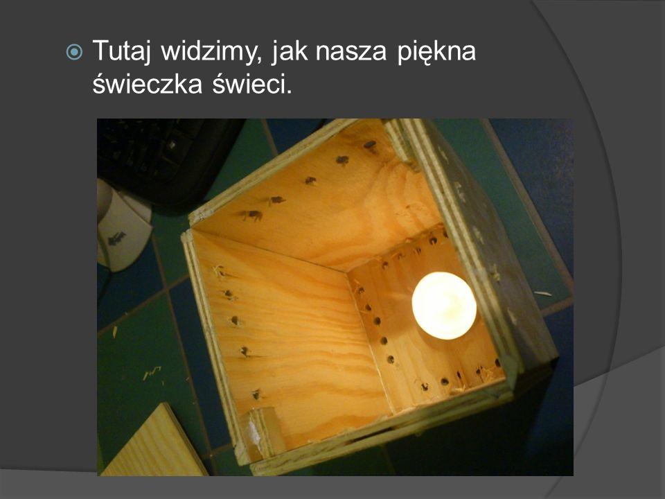 Tutaj widzimy, jak nasza piękna świeczka świeci.