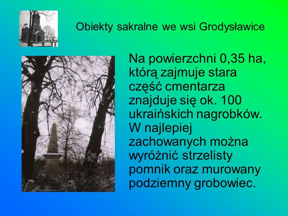 Na powierzchni 0,35 ha, którą zajmuje stara część cmentarza znajduje się ok. 100 ukraińskich nagrobków. W najlepiej zachowanych można wyróżnić strzeli