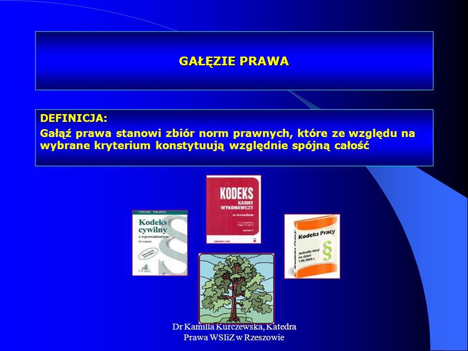 Dr Kamilla Kurczewska, Katedra Prawa WSIiZ w Rzeszowie GAŁĘZIE PRAWA DEFINICJA: Gałąź prawa stanowi zbiór norm prawnych, które ze względu na wybrane k