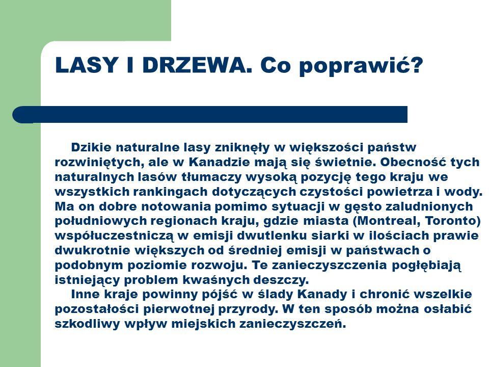 LASY I DRZEWA.Co poprawić.