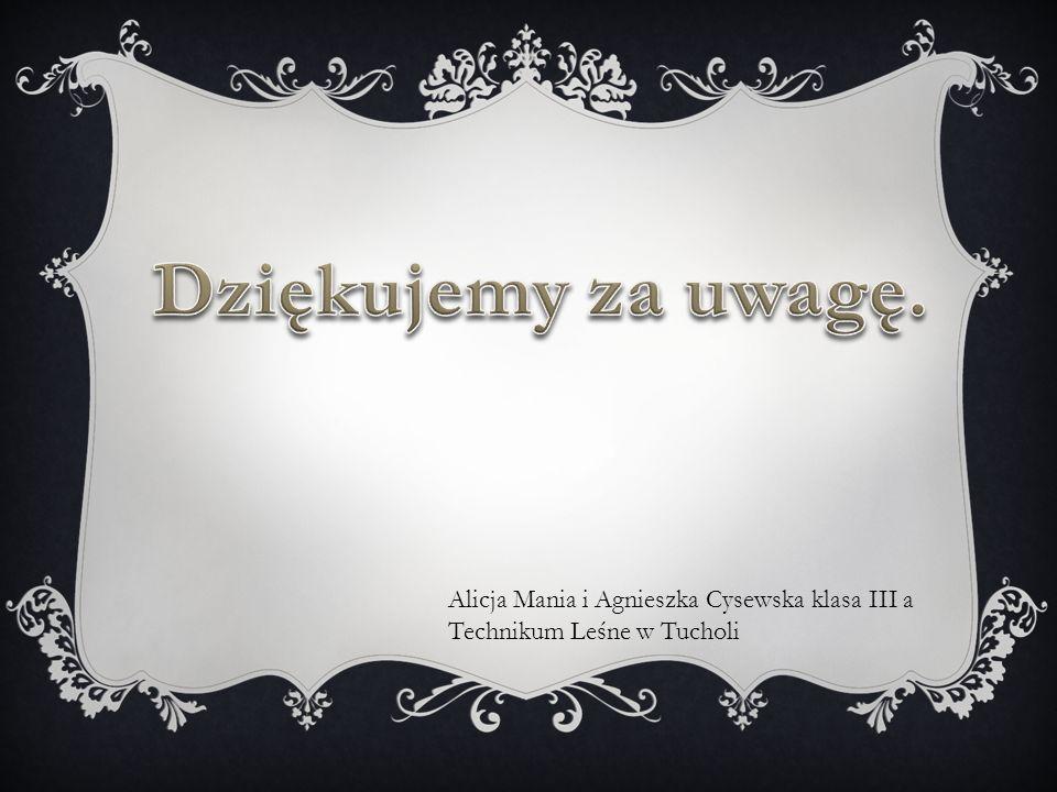 Alicja Mania i Agnieszka Cysewska klasa III a Technikum Leśne w Tucholi