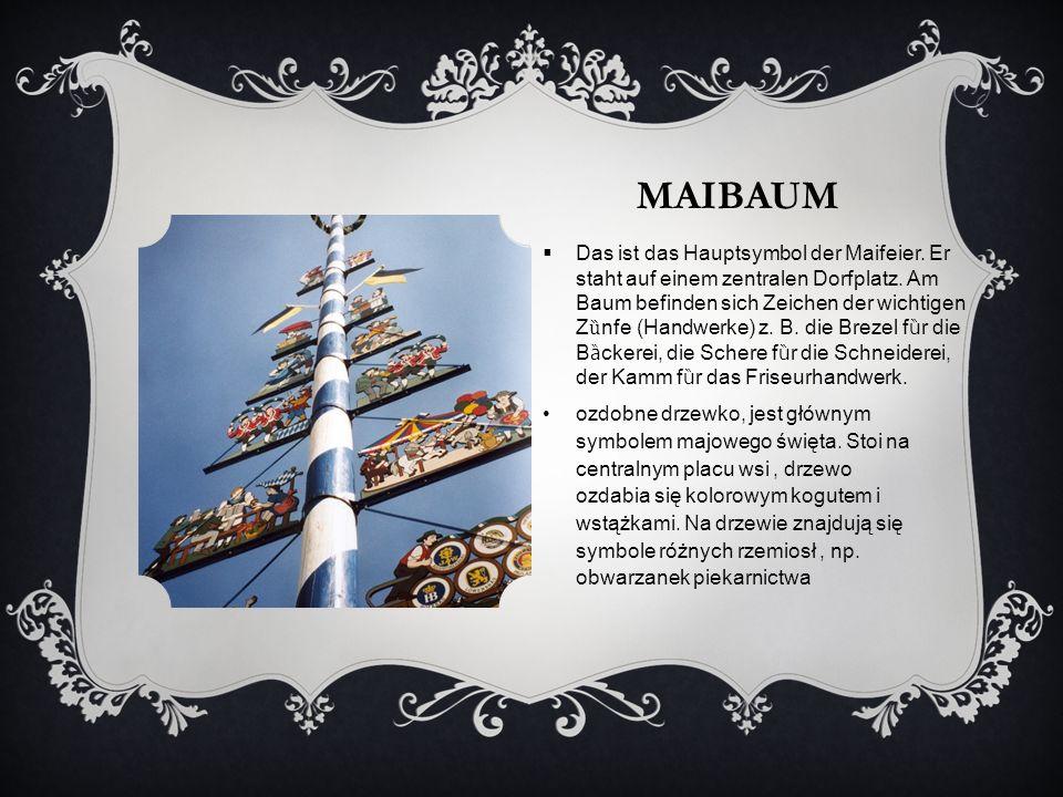 MAIBAUM ozdobne drzewko, jest głównym symbolem majowego święta. Stoi na centralnym placu wsi, drzewo ozdabia się kolorowym kogutem i wstążkami. Na drz