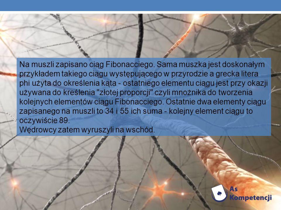 Na muszli zapisano ciąg Fibonacciego. Sama muszka jest doskonałym przykładem takiego ciągu występującego w przyrodzie a grecka litera phi użyta do okr