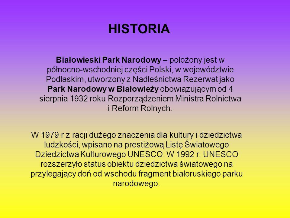 Białowieski Park Narodowy – położony jest w północno-wschodniej części Polski, w województwie Podlaskim, utworzony z Nadleśnictwa Rezerwat jako Park N