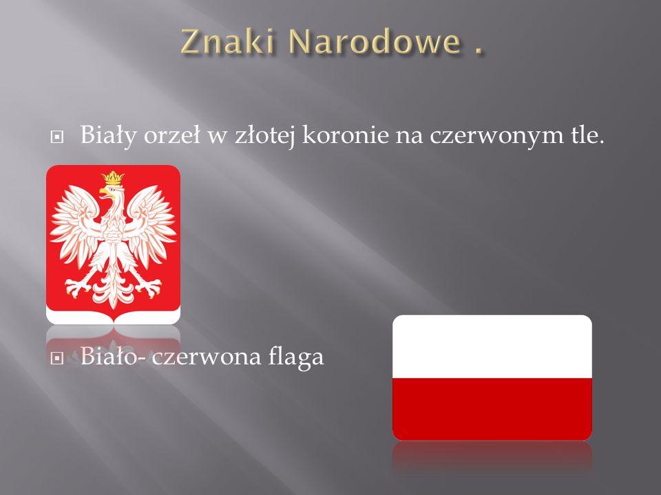 Biały orzeł w złotej koronie na czerwonym tle. Biało- czerwona flaga