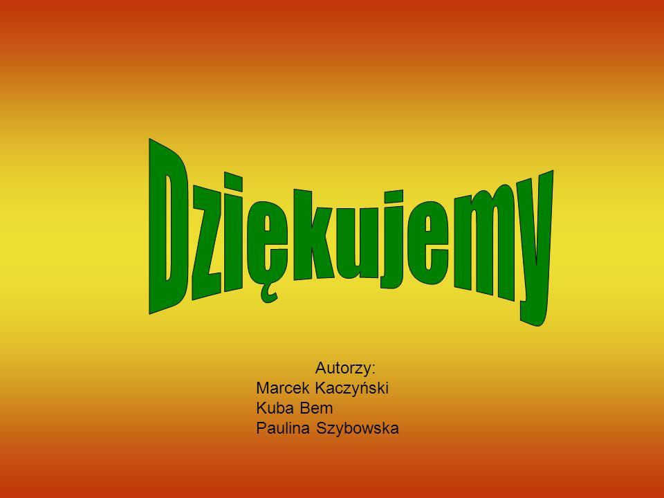 Autorzy: Marcek Kaczyński Kuba Bem Paulina Szybowska