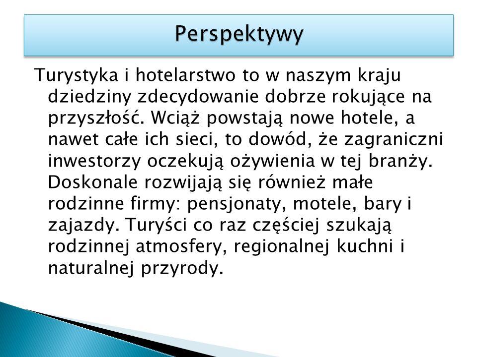 Turystyka i hotelarstwo to w naszym kraju dziedziny zdecydowanie dobrze rokujące na przyszłość. Wciąż powstają nowe hotele, a nawet całe ich sieci, to