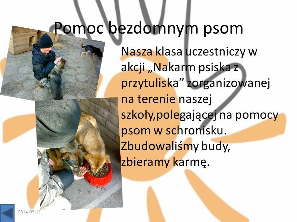 Pomoc bezdomnym psom Nasza klasa uczestniczy w akcji Nakarm psiska z przytuliska zorganizowanej na terenie naszej szkoły,polegającej na pomocy psom w